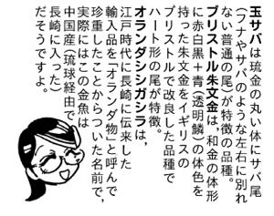 秘密のレプタイルズ_史絵金魚語り.jpg