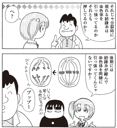 bb_p103_紡錘糸は押してる?.jpg