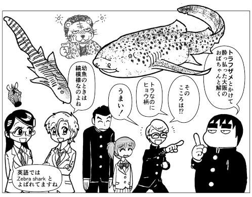 ヒョウ柄トラフザメ1.png