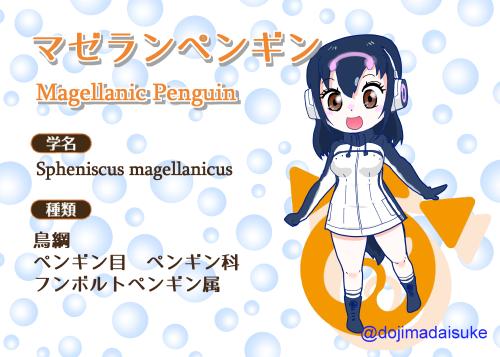 オリフレ図鑑マゼランペンギン500px.png