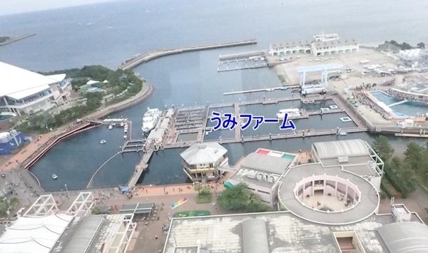 180505 八景島シーパラダイス12 島俯瞰2.JPG