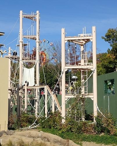 190103 東山zoo_チンパンジー舎1811-1.JPG