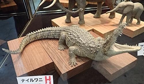 1902 ワンフェス2019冬 粘土でつくる生き物_ナイルワニ_ホビージャパン.JPG