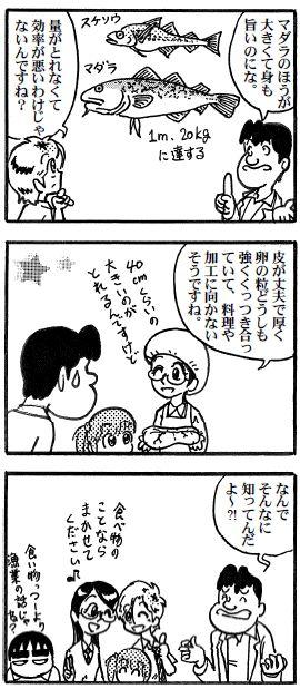 moebio100709 マダラの子2.jpg