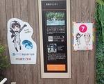 1809サンシャイン水30ケープペンギン_草原のペンギン_解説&フレンズ看板.JPG