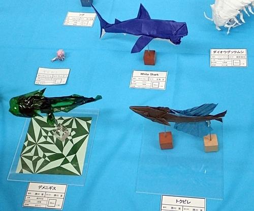 190519 東大五月祭0518_ (26)折紙_魚類.JPG