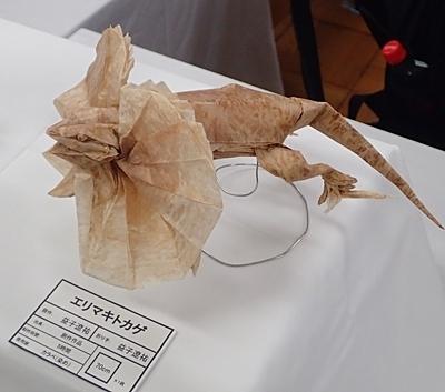 190519 東大五月祭0518_ (37)折紙エリマキトカゲ.JPG
