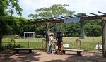 豊橋のんほいパーク1707_アフリカ園観察台B.JPG
