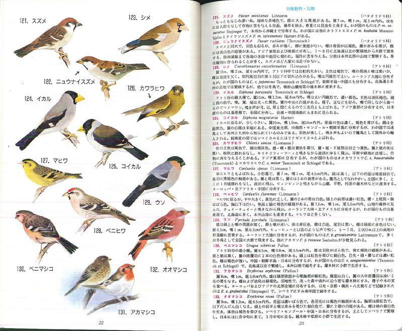 080509 原色日本動物図鑑p22