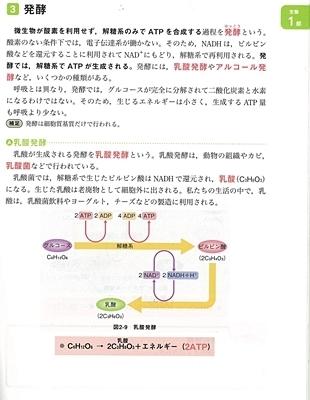 mybestよくわかる生_呼吸2.jpg