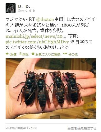 131018 中国スズメバチツイート.jpg