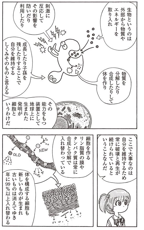 bb_p271_細胞ー破壊と再生1908_550px.png
