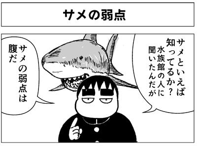 サメの弱点1-1.png