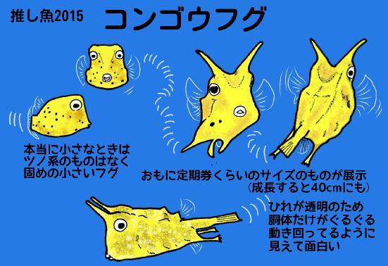 2015推し魚コンゴウフグ.png