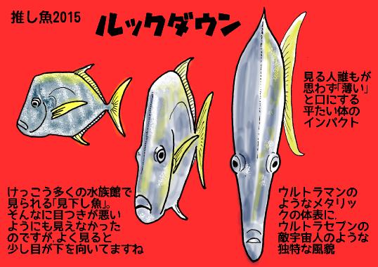 2015推し魚ルックダウン.png