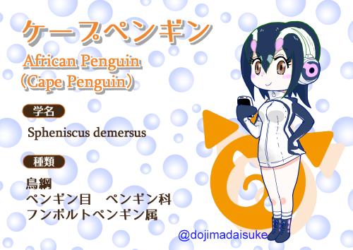 オリフレ図鑑ケープペンギン500px.png