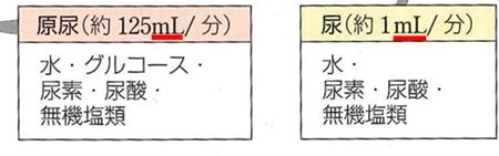 130420_ml_D.jpg