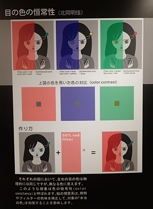 150720 錯覚12 目の色の恒常性.JPG