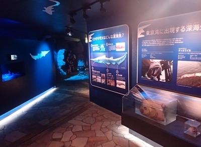 150905 八景島シーパラ_深海リウム.JPG