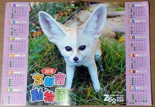 180104京都市動物園フェネックカレンダー.JPG