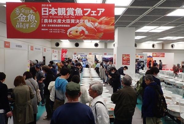 180414日本観賞魚フェア01.JPG