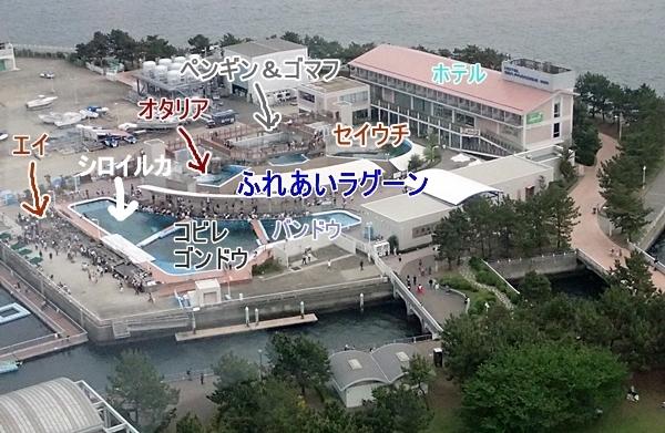 180505 八景島シーパラダイス13 島俯瞰3ふれあいラグーン.JPG