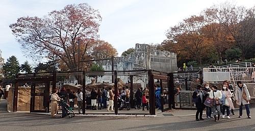 190103 東山zoo_ペンギン舎1811.JPG