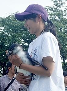190114 1805 東武zoo ペンギン_ひな_えだまめ_だっこ.JPG