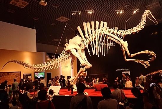 1907科博_恐竜博2019_20 (96)デイノケイルス_11m全身.JPG