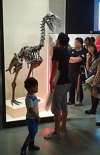 1907科博_恐竜博2019_90ガストルニス (197).JPG