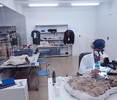 1907科博_恐竜博2019_95 (204)_化石クリーニングラボ.JPG