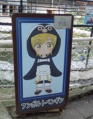 190825 小諸市zoo28_0817o (19)フンボルトペンギン_キャラ.JPG