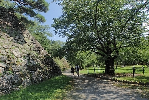190825 小諸市zoo70_懐古園190817 (24).JPG