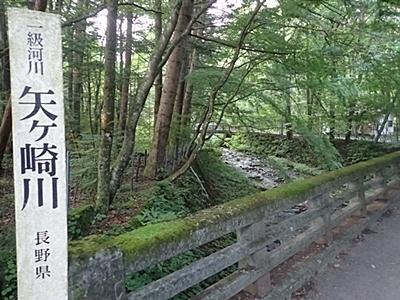 190825 小諸市zoo97_軽井沢0817o (78)矢ヶ崎川.JPG