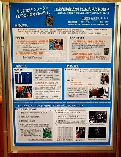 191221エンリッチメント大賞2019_36_1207s (4)ポスター_円山動物園_オランウータン口腔ケア_0000.JPG
