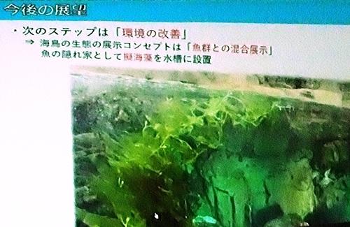 191231エンリッチメント大賞057_1207 (212)スライド_葛西臨海水族園_今後.JPG