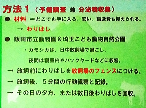191231エンリッチメント大賞162_1207(236)スライド_飯田市立動物園_ニホンカモシカ_houhou1.JPG