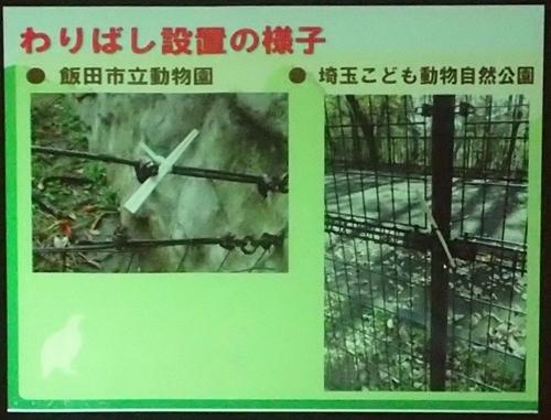 191231エンリッチメント大賞162_1207(239)スライド_飯田市立動物園_waribashi .JPG