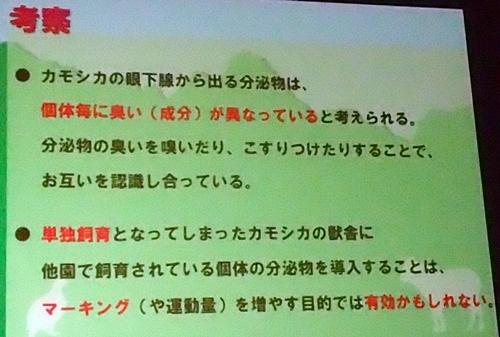 191231エンリッチメント大賞163_1207(252)スライド_飯田市立動物園_ニホンカモシカ_考察.JPG