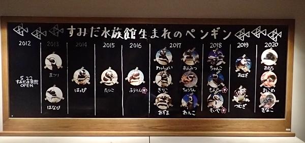 200628すみだ水族館_35_0624o (39)歴代ペンギン赤ちゃん情報.JPG