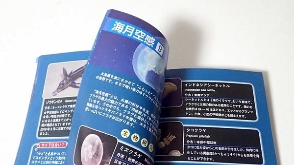 200711サンシャイン水_82_o (140)ガイドブック新ページ.JPG