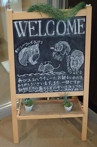 200809埼玉C zoo_73-2_0801o (298)ecoハウチュー_ボード.JPG
