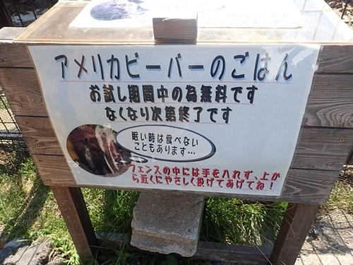 200823 伊豆シャボテン公園-40_0813o (33)ビーバーのえさ(試行).JPG