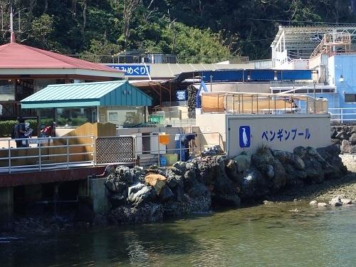 200922 下田海中水族館20_0814o (36)ペンギンプール_裏.JPG