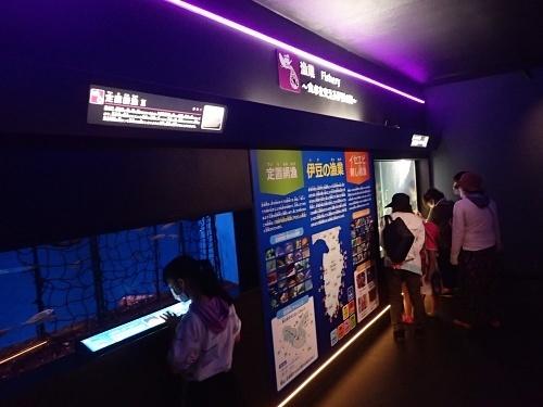 200922 下田海中水族館42_0814o (80)南伊豆水槽.JPG