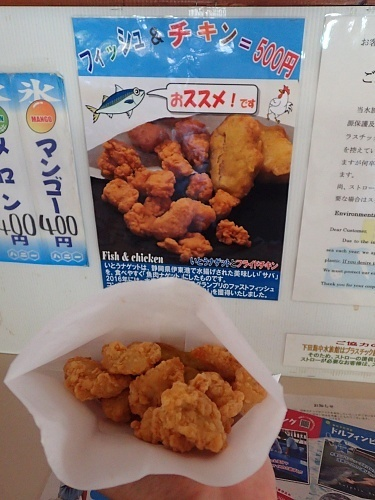 200922 下田海中水族館60_0814p (442)イルカウォッチングボート.JPG
