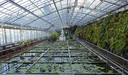 2009熱川バナナワニ園60_0813o (261)ハス・スイレン温室.JPG