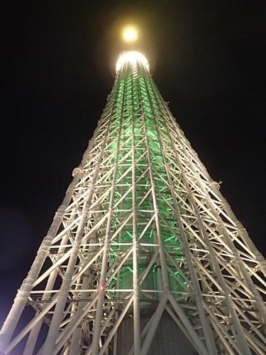 2011 チンアナゴの日00_東京スカイツリー1111 (2).JPG