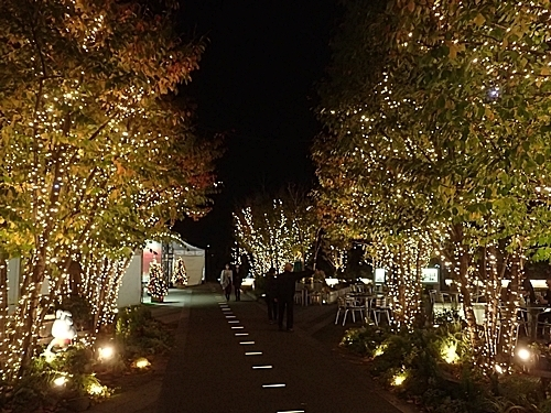 2011 チンアナゴの日90_ソラマチ1111 (1)クリスマスイルミ.JPG