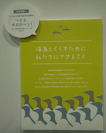 201122-12葛西臨海公園1121o (13)つどえオロローン関連展示.JPG